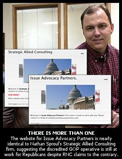 Consultation advocacy